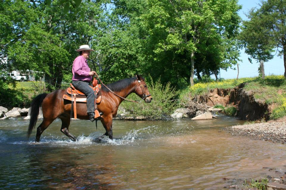 Tom_Seay_riding_through_the_river_crossing_on_Andora_Farm.jpg